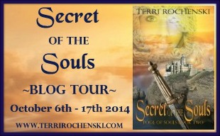 Secret of the Souls by Terri Rochenski